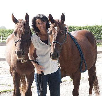 Kinesiologie Pferde